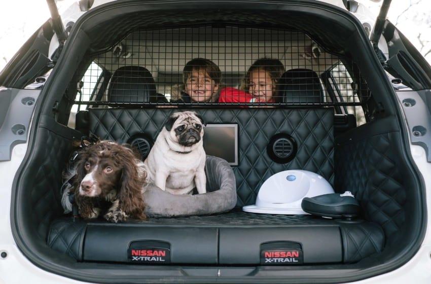 Köpek dostu ailelere özel X-Trail
