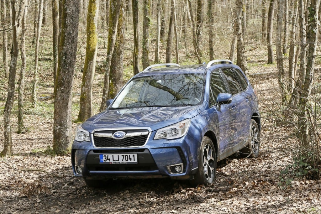 Forester (10)